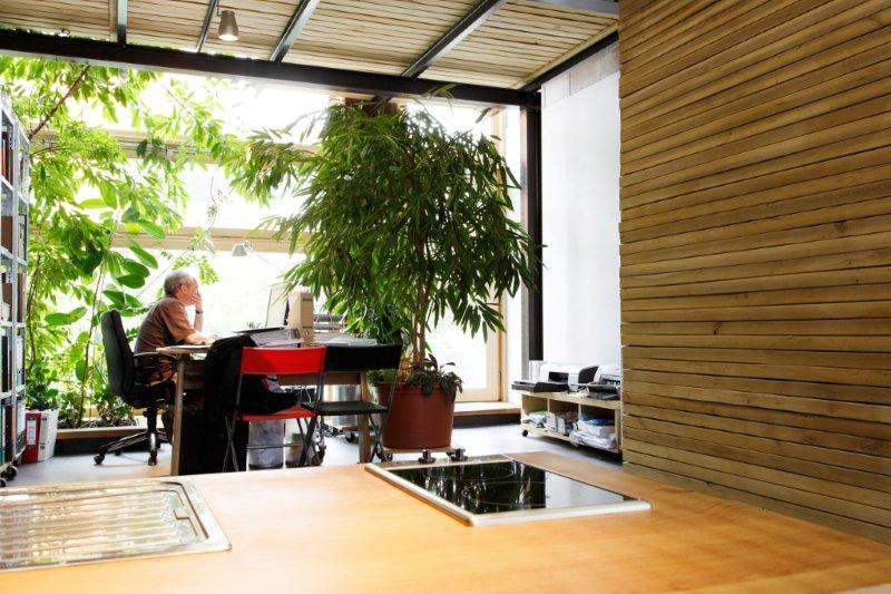 t bingen gr nes loft begr ntes treppenhaus als lebendiges zentrum pflanzen f r menschen. Black Bedroom Furniture Sets. Home Design Ideas