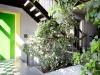 Grünes Loft
