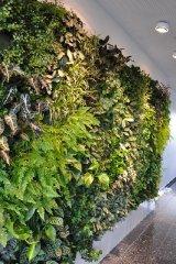 Vertikales Grün im Innenraum