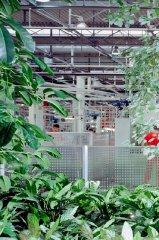 Produktionshalle im Ferrari-Stammwerk Maranello (Italien)