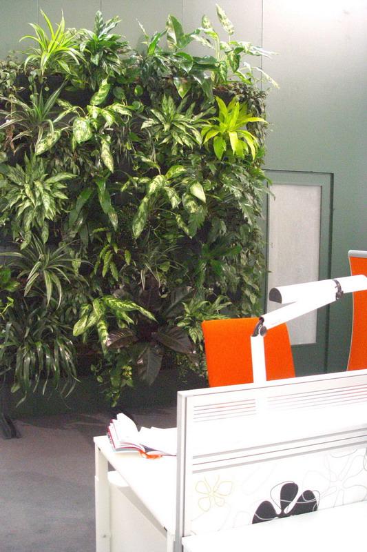 nat rliche arbeitsbedingungen mit pflanzen gr ne b ros steigern leistungsf higkeit und senken. Black Bedroom Furniture Sets. Home Design Ideas