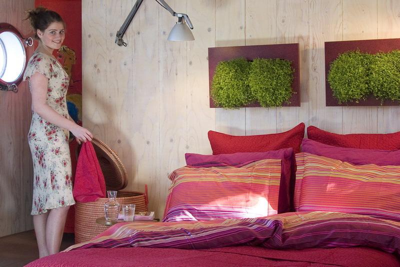 pflanzenbilder lebendige kunstwerke f r die wohnung und. Black Bedroom Furniture Sets. Home Design Ideas